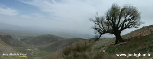 ارتفاعات شاهزاده مسلم